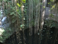 Cenote Ik Kil bei Chichen Itza