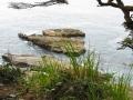 WCT zwischen Michigan Creek und Tsusiat Falls