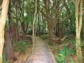 Wilsons Promontory Park