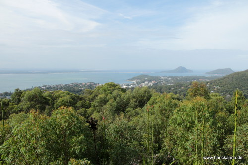 Port Stephens - Nelson Bay