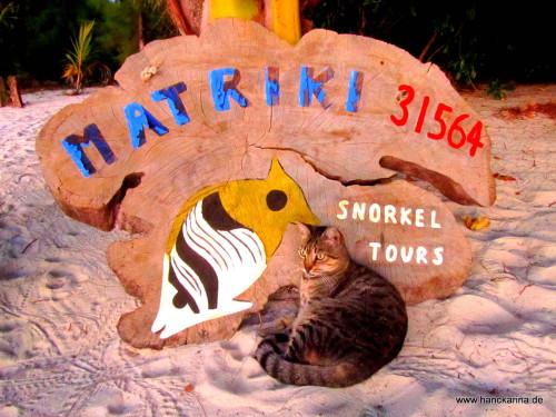 Aitutaki: the Tiger of Matriki