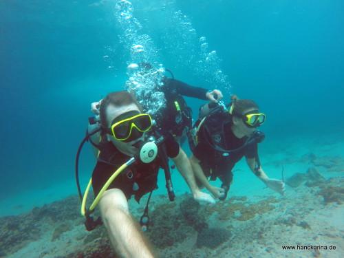 Hanckarina unter Wasser